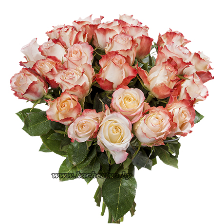 Букет красно-белых роз Sweetness