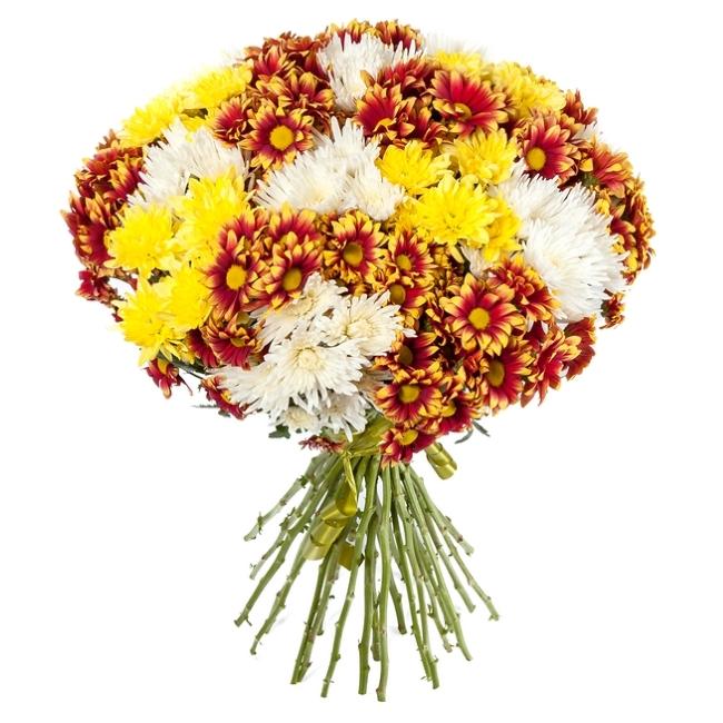 Букет из разноцветных хризантем.
