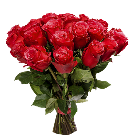 Букет из больших красных роз.